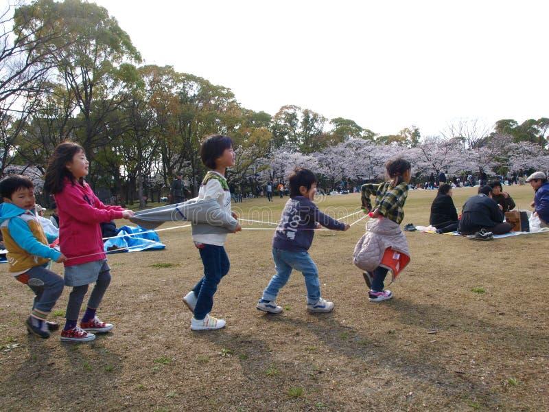 Cuerda del tren del juego de niños en parque con el flor de Sakura fotos de archivo libres de regalías