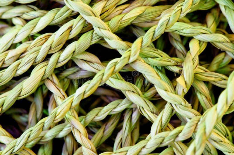 Cuerda hecha del zizanioide de Vetiveria de la hierba del vetiver foto de archivo libre de regalías