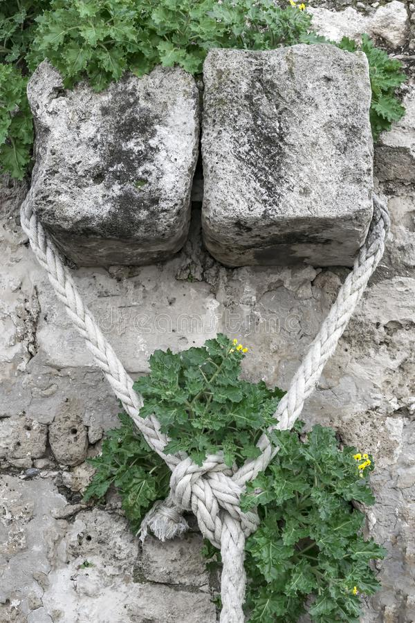 Cuerda que amarra blanca anudada en la pared de piedra con las plantas verdes imagen de archivo