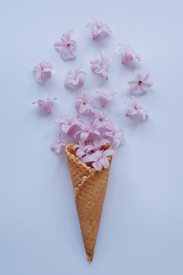 Cuerno del helado con el jacinto rosado en un fondo azul Para la tarjeta de felicitación feliz del día de madre, del día de las m imagen de archivo libre de regalías