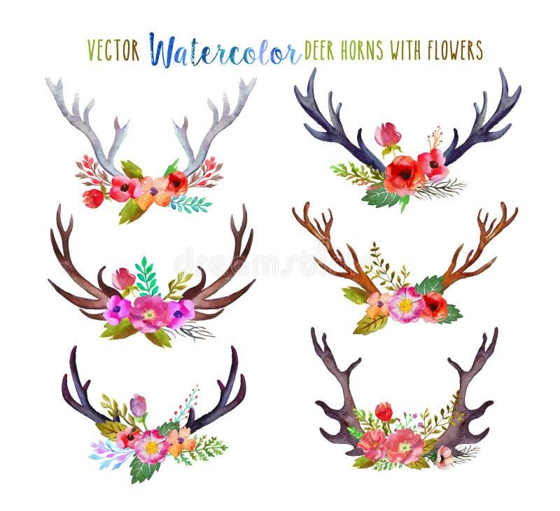 Cuernos de los ciervos de la acuarela del vector ilustración del vector