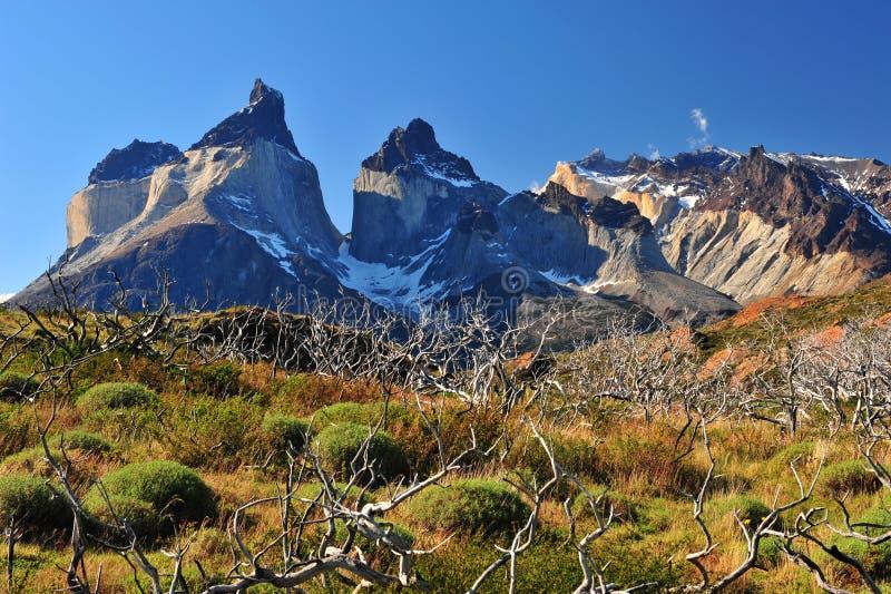Cuernos Del Paine royalty-vrije stock foto's
