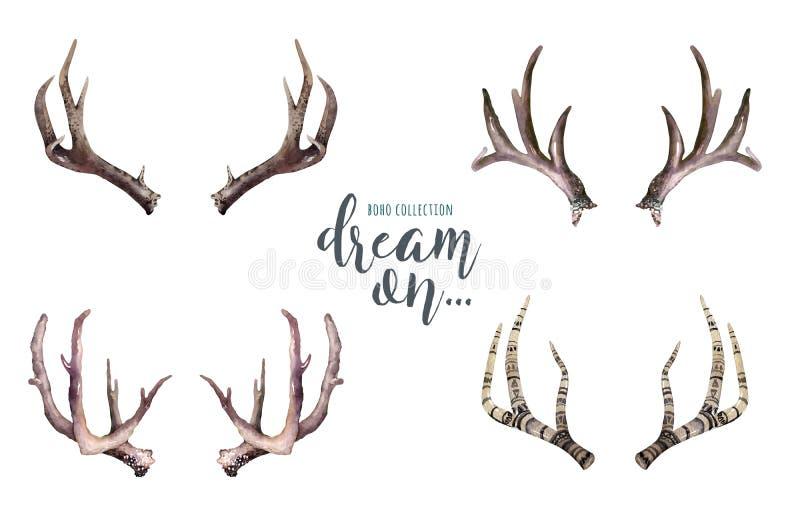 Cuernos dibujados mano de los ciervos de la acuarela Diseño bohemio Elemento de la tradición de Boho Diseño animal del cuerno stock de ilustración
