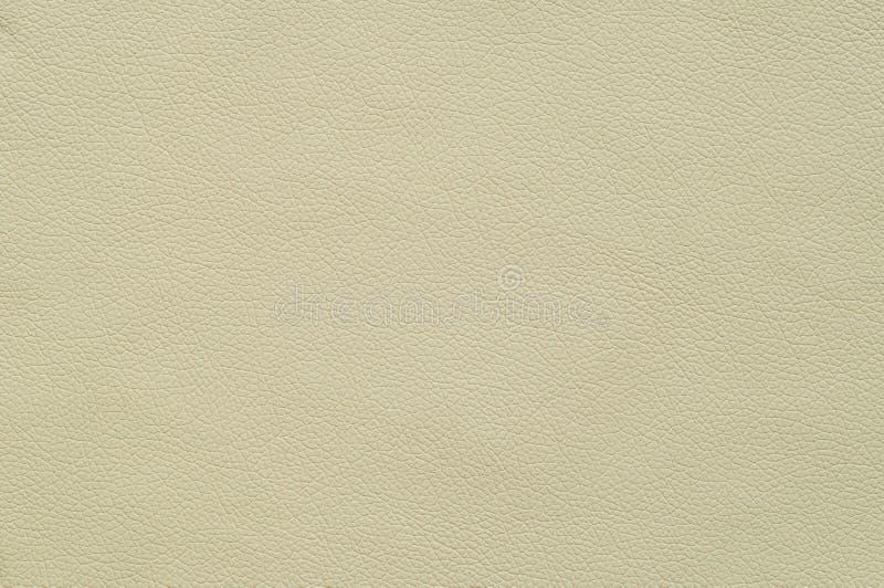 Cuero artificial artificial de marfil con textura grande imagenes de archivo