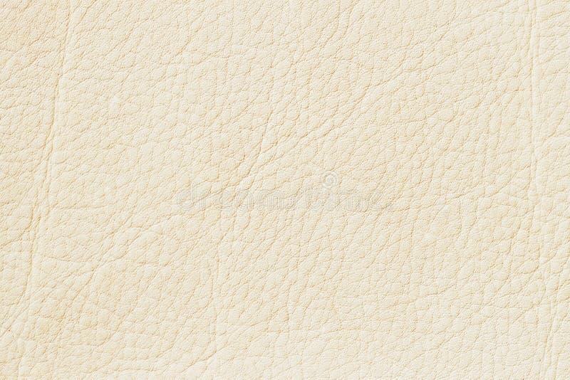 Cuero aut ntico de la pintura poner crema blanca fondo for Pintura de color beige claro