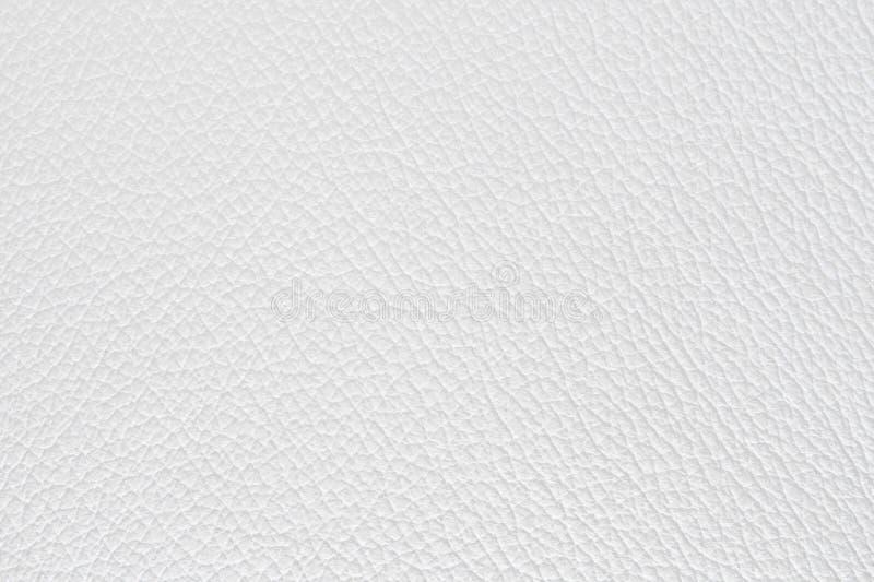 Cuero blanco imagen de archivo