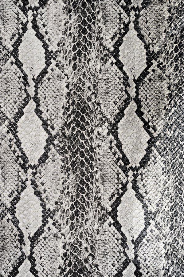 Cuero de la serpiente del fondo de la textura foto de archivo