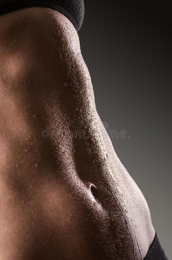 Asombroso Cuerpo Femenino Dentro De Galería - Anatomía de Las ...