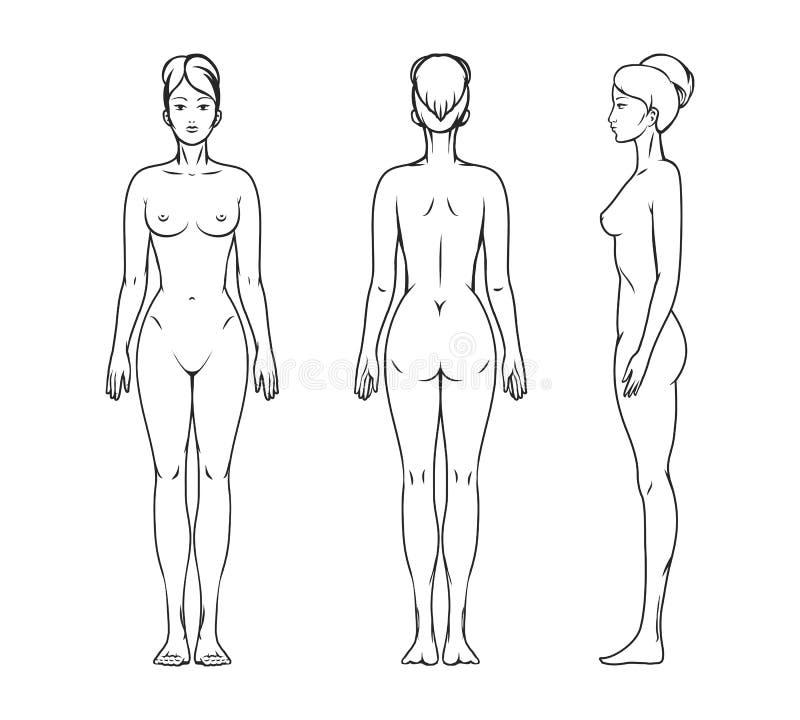 Dorable La Imagen De Un Cuerpo Femenino Ideas - Anatomía de Las ...
