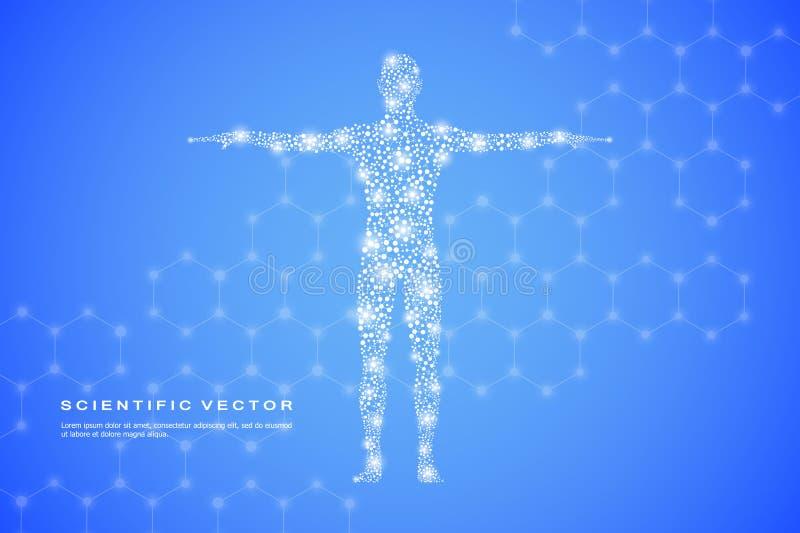 Cuerpo humano abstracto con la DNA de las moléculas Medicina, ciencia y concepto de la tecnología Ilustración del vector