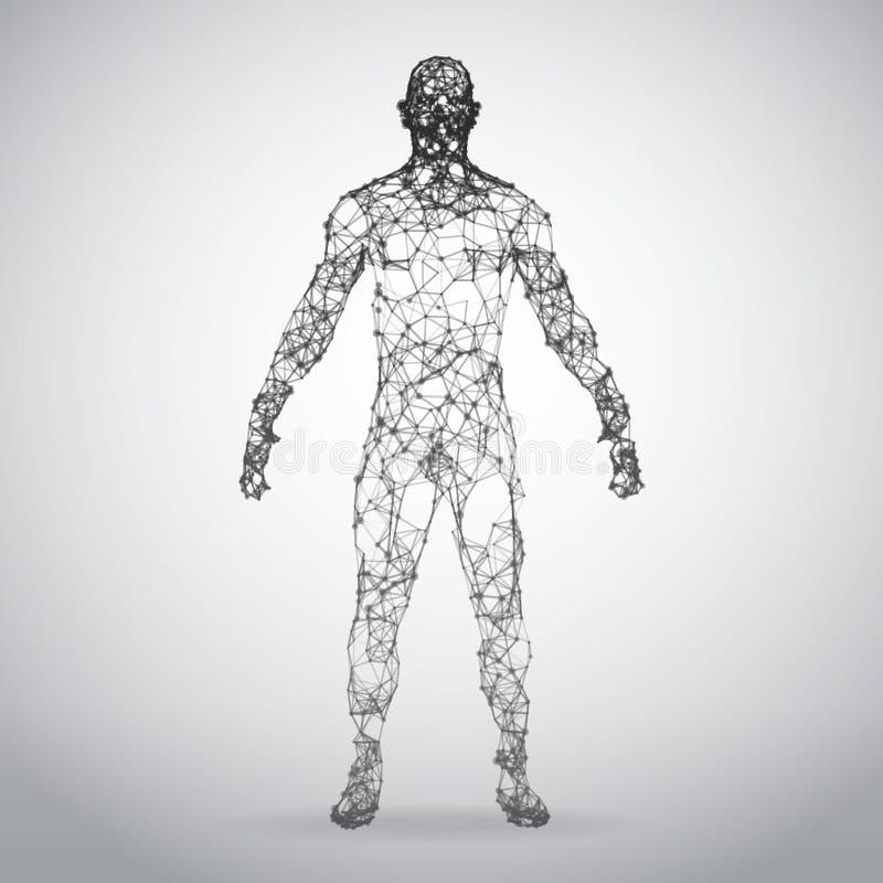 Cuerpo humano del marco abstracto del alambre Modelo poligonal 3d en el fondo blanco stock de ilustración