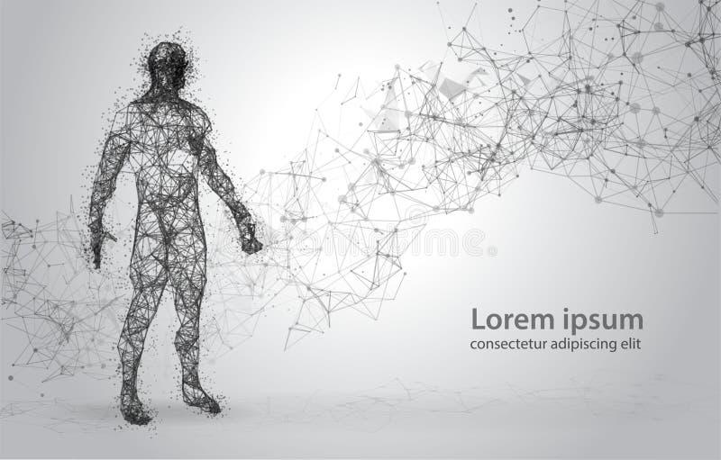 Cuerpo humano del marco abstracto del alambre Modelo poligonal 3d en el fondo blanco Puntos y líneas bajo polivinílicos imágenes de archivo libres de regalías