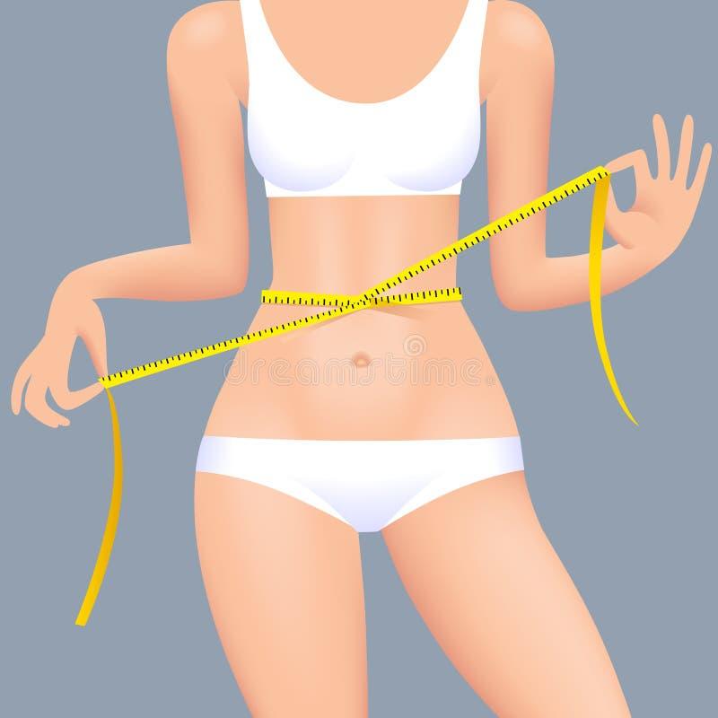 Cuerpo sexual del ` s de la mujer en ropa interior con la cinta métrica de la cintura stock de ilustración