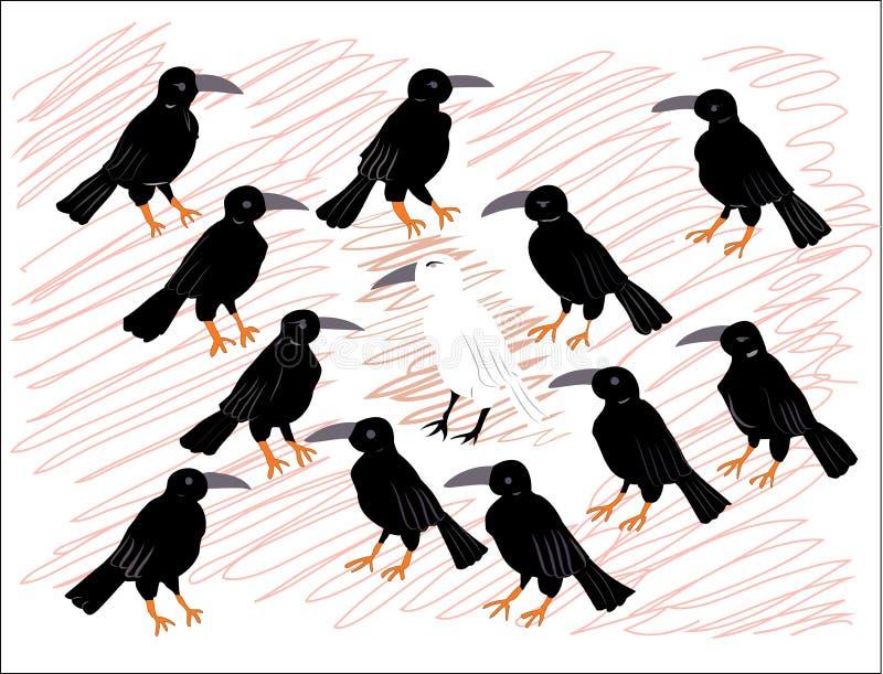 Cuervo blanco solo entre cuervos negros imagen de archivo