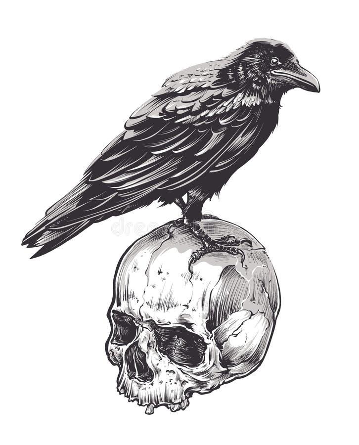 Cuervo en el cráneo ilustración del vector