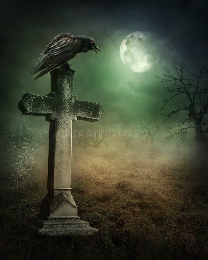Cuervo en un sepulcro fotografía de archivo