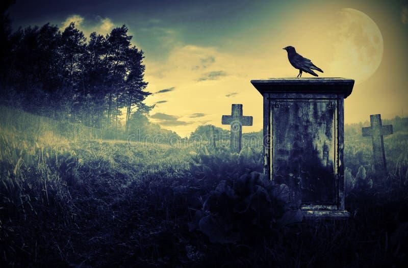 Cuervo en una lápida mortuaria fotos de archivo