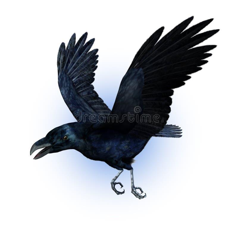 Cuervo en vuelo stock de ilustración