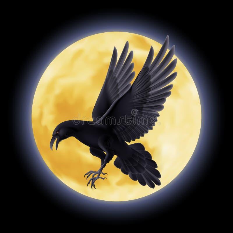Cuervo negro libre illustration
