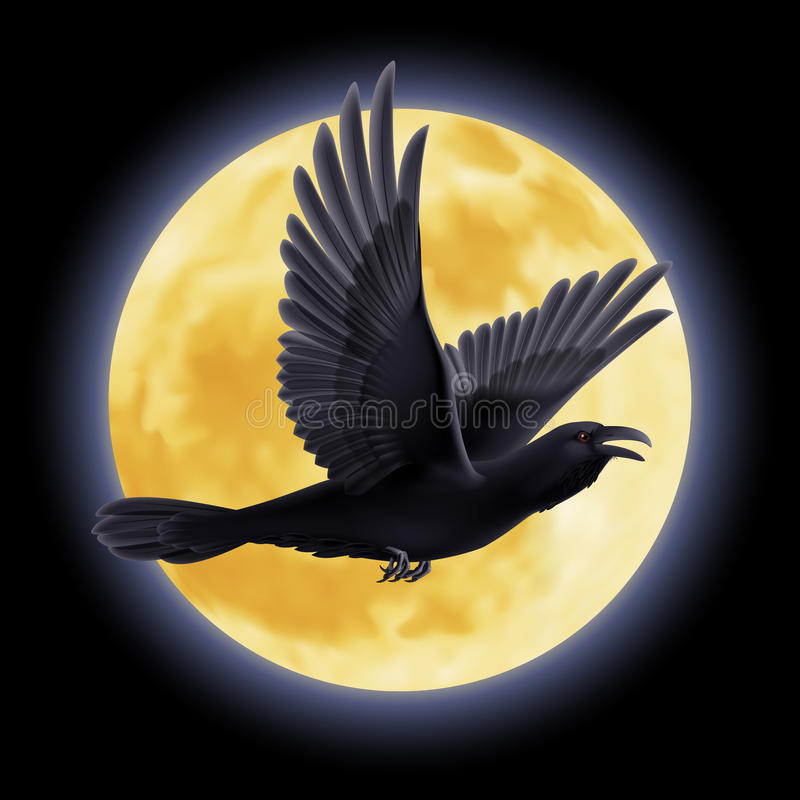 Cuervo negro stock de ilustración