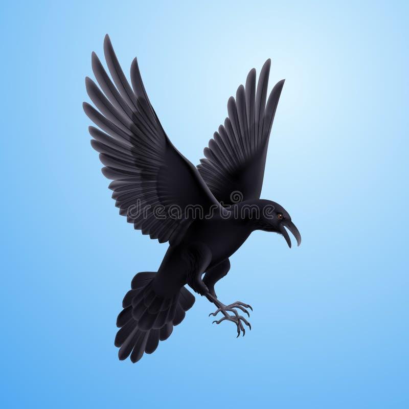 Cuervo negro en fondo azul libre illustration