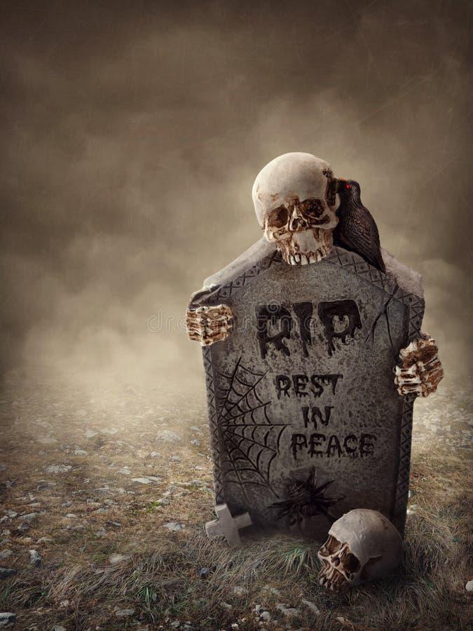 Cuervo que se sienta en una lápida mortuaria fotos de archivo