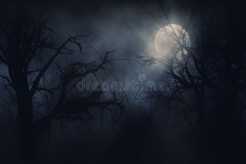 Cuervos de noche ilustración del vector
