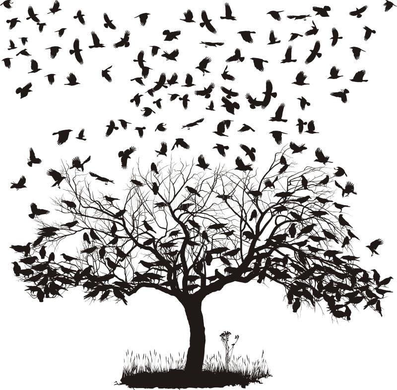 Cuervos en un árbol stock de ilustración