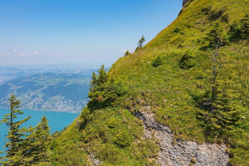 Cuesta del monte Fuji Rigi en Suiza en verano foto de archivo libre de regalías