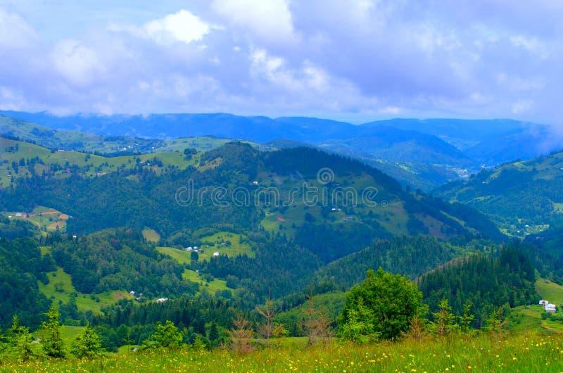 cuestas de montaña de los Cárpatos, un paisaje natural hermoso imágenes de archivo libres de regalías