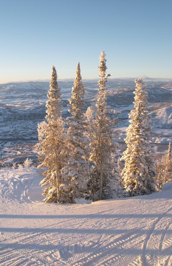 Cuestas del esquí en el invierno fotos de archivo libres de regalías