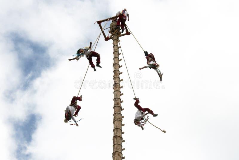 CUETZALAN, MEXICO - 2012: A family of acrobats known as `los voladores` perform in the Cuetzalan zocalo. A member of the acrobats known as `los voladores` stock photos