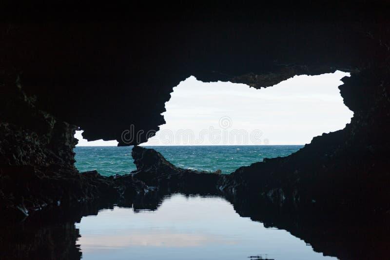 Cueva animal de la flor en Barbados Agua en cueva y la reflexión fotos de archivo libres de regalías