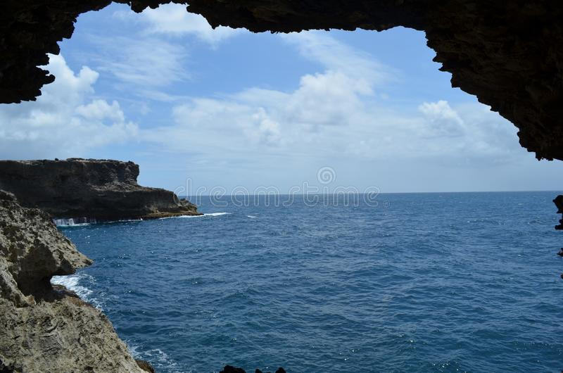 Cueva Barbados de la flor foto de archivo libre de regalías