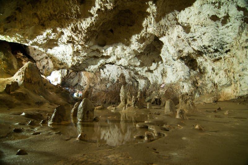 Cueva de Polovragi del condado de Gorj, en Oltenia, Rumania fotos de archivo libres de regalías