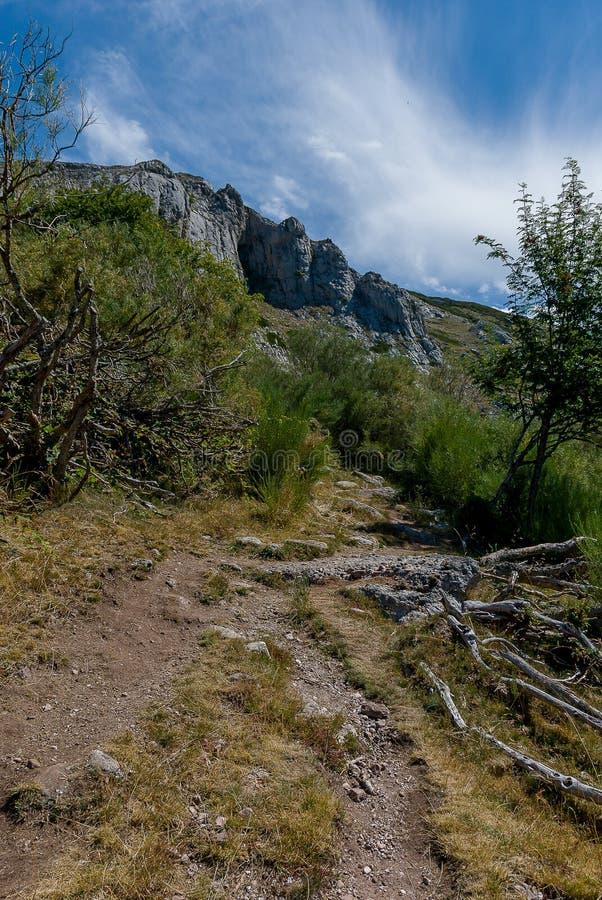 Cueva koppar, f?delse av floden Pisuerga i nationalparken av Fuentes Carrionas Palencia arkivbilder