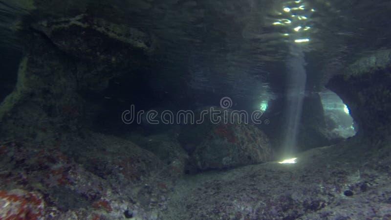 Cueva subacuática almacen de video