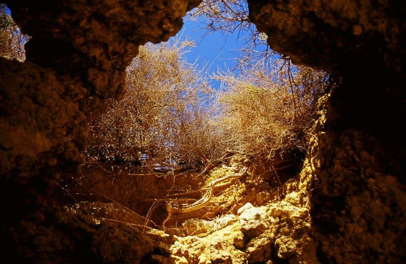 Cueva Subterráneo Fotografía de archivo