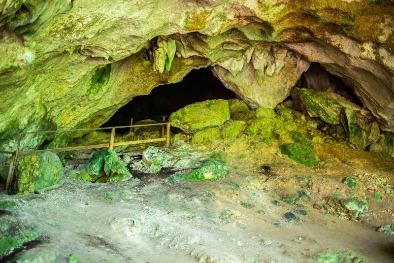 Cueva Ventana naturlig grotta i Puerto Rico arkivbild