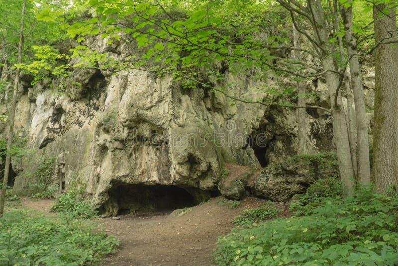 Cuevas de la piedra caliza foto de archivo