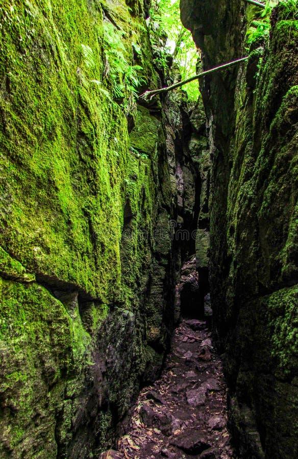 Cuevas verdes imagenes de archivo