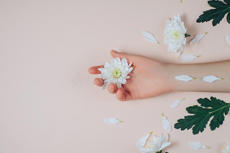 Cuidado creativo y de la moda del arte de piel de manos y de flores blancas a disposición de mujeres Mano femenina con las flores foto de archivo