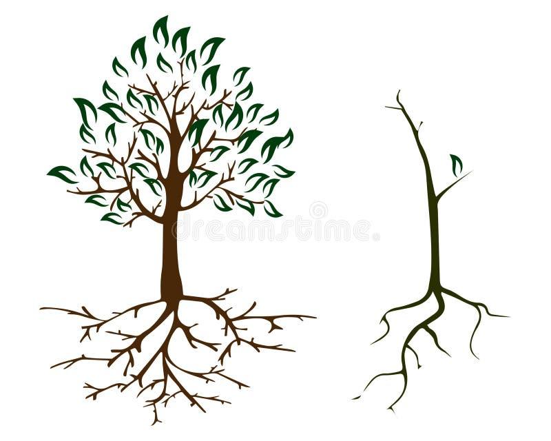cuidado da ecologia do outono de 2 árvores ilustração royalty free