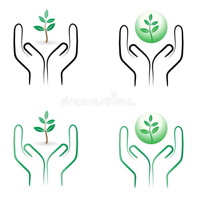 Cuidado da planta ilustração stock