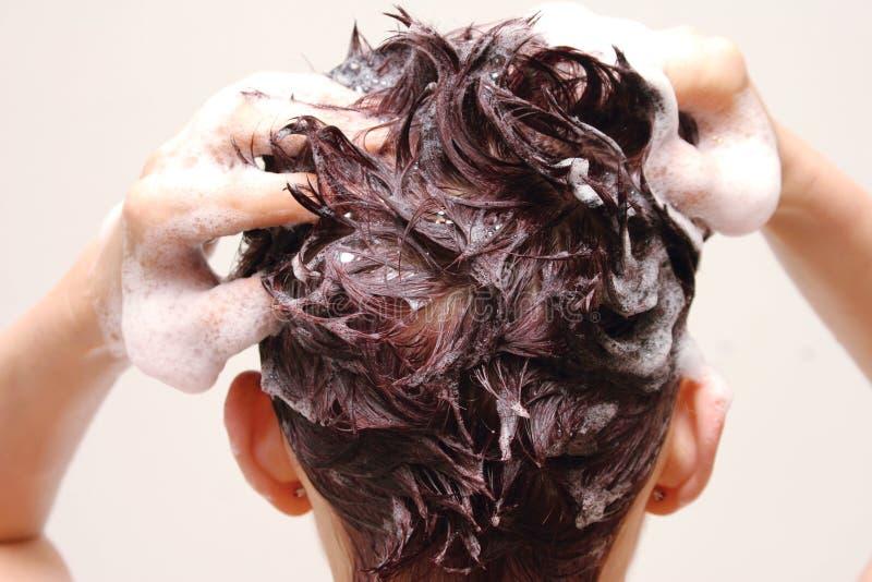 Cuidado de cabelo fotografia de stock royalty free