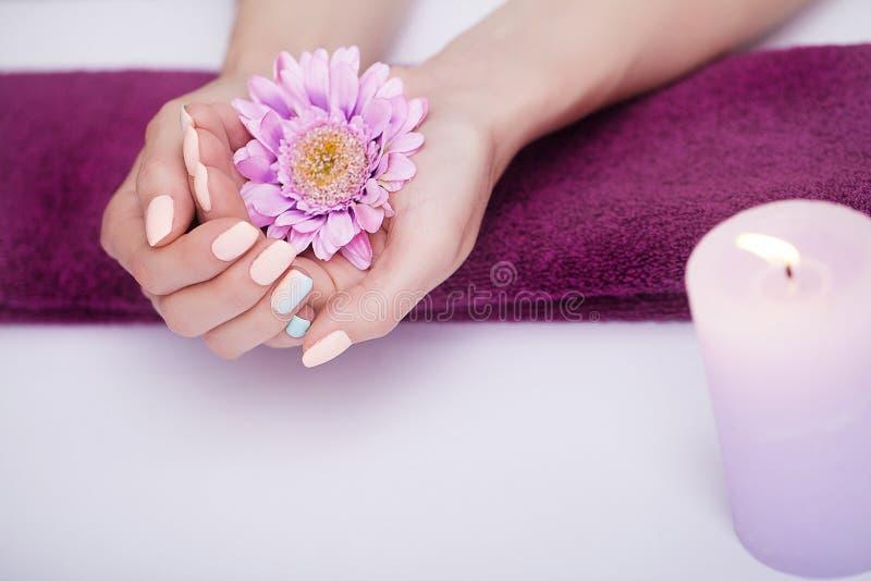 Cuidado del clavo Primer de las manos hermosas de la mujer con los clavos naturales en salón de belleza Uñas de impregnación feme imagen de archivo