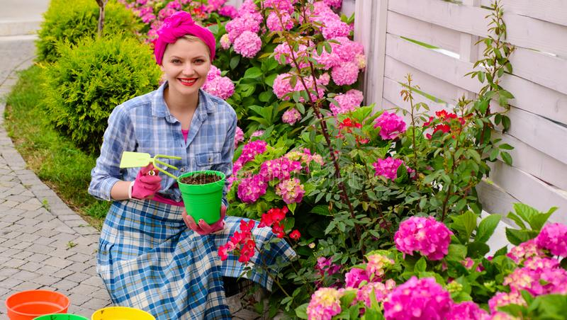Cuidado e jardinagem da planta Flores felizes da planta do jardineiro da mulher Cuidado da mulher e para crescer flores da hortên fotos de stock royalty free