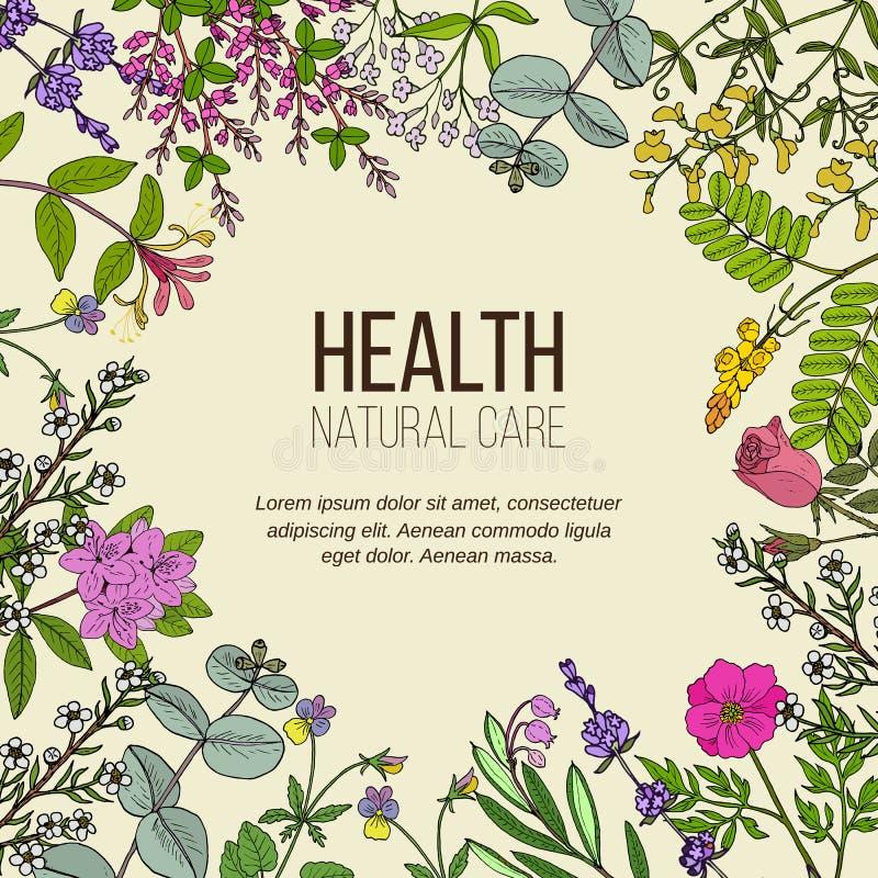 Cuidado natural de la salud, colecci?n del vintage libre illustration