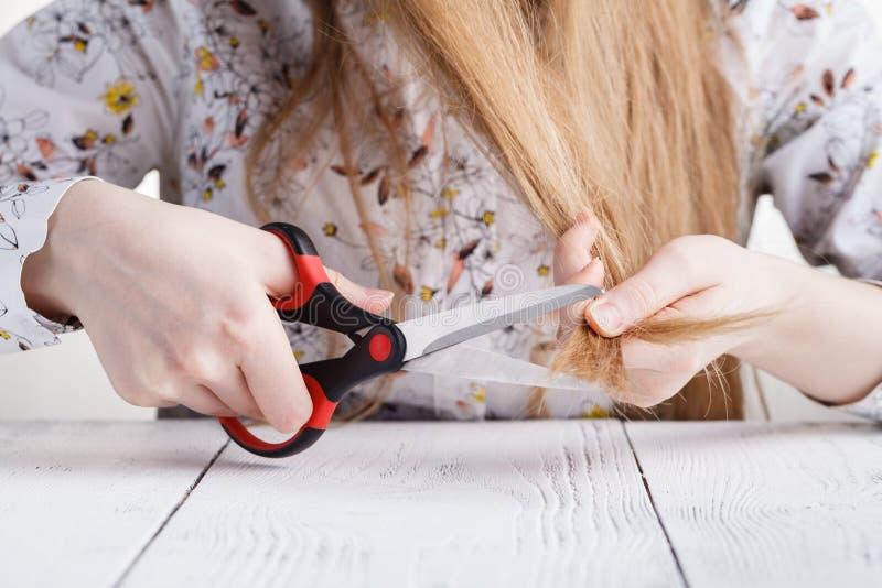 Cuidados capilares Close up do cabelo bonito de Hairbrushing da mulher com Bru imagens de stock royalty free
