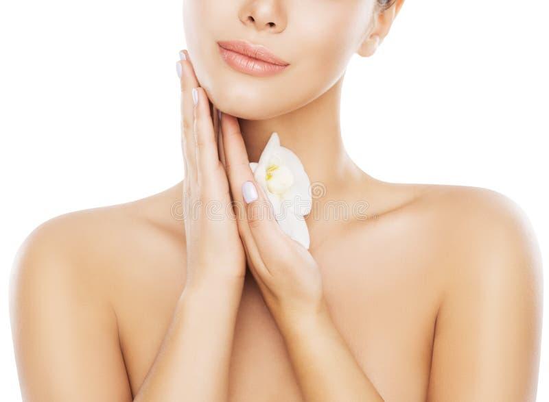 Cuidados com a pele da cara da beleza, mulher que hidrata e que faz massagens o pescoço à mão sobre o branco foto de stock